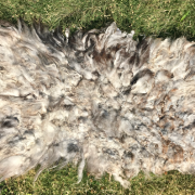Home Decor | Felted Lamb Fleece Rug | Copia Cove Icelandic Sheep