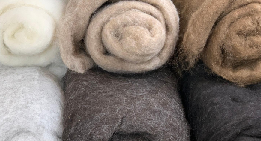 Copia Cove Icelandic Sheep and Wool Live Sale Instagram